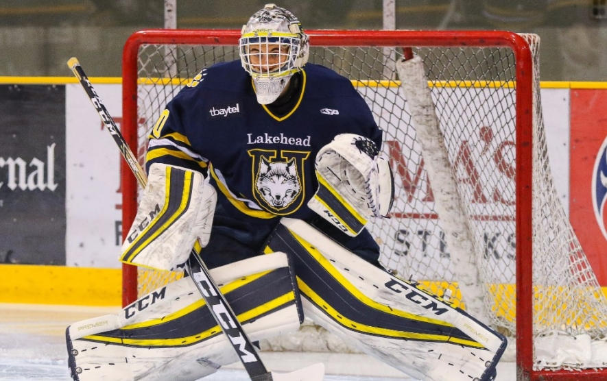 Image result for lakehead thunderwolve hockey